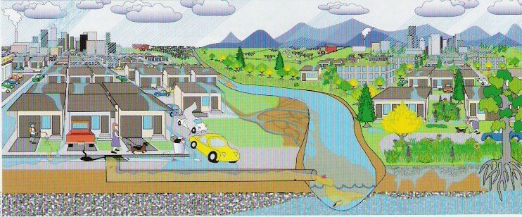 A drawing of runoff going through a town into a river.